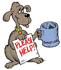 donate_dog